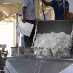 Cooked Rice being shifted to Trolleys