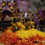 Pushpa Vrishti A colorful shower of flowers